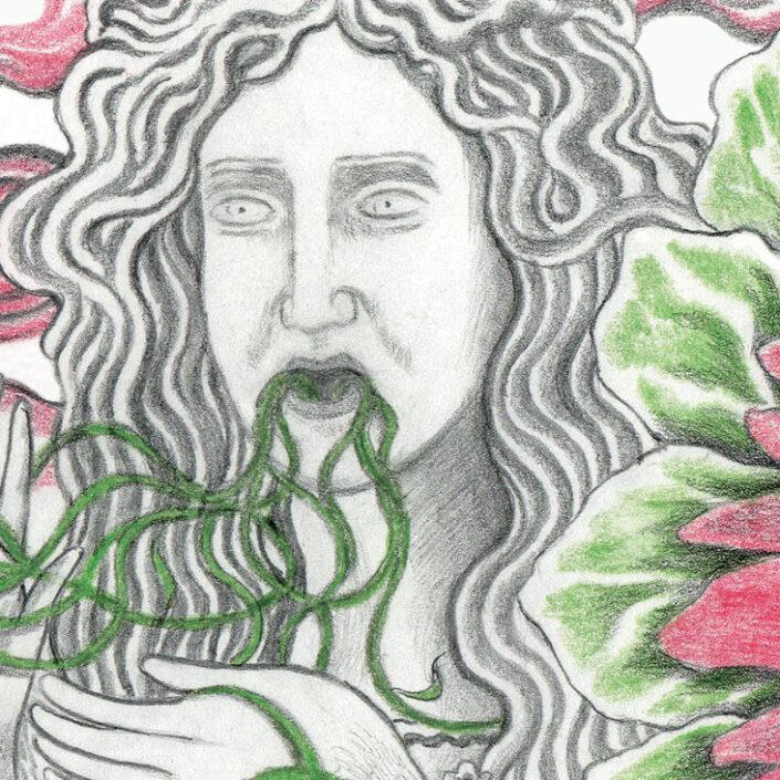 illustration   TINALS